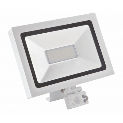 Projecteur led 10 watt détecteur blanc | Led Flash